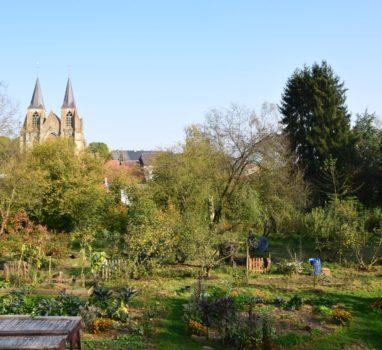 Wwoofing #2 | Le Centre de partage à Avioth dans la Meuse